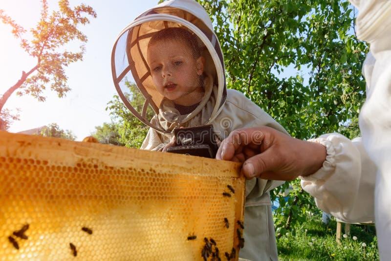 Den erfarna beekeeperfarfadern undervisar hans sonson som att bry sig för bin Biodling Överföringen av erfarenhet royaltyfri fotografi