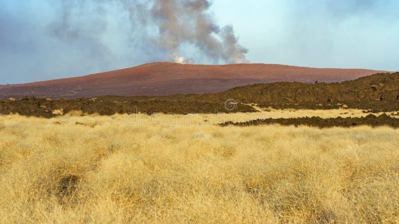 Den Erta ?lvulkan i den Danakil f?rdjupningen i Etiopien, Afrika arkivbilder