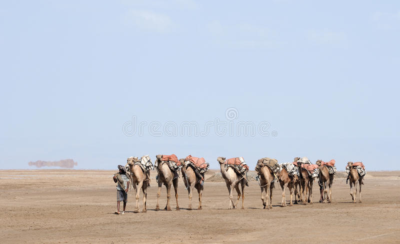 den ethiopian husvagnen saltar fotografering för bildbyråer