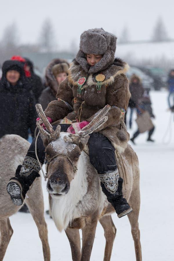 Den Evenk flickan som rider en ren arkivfoto