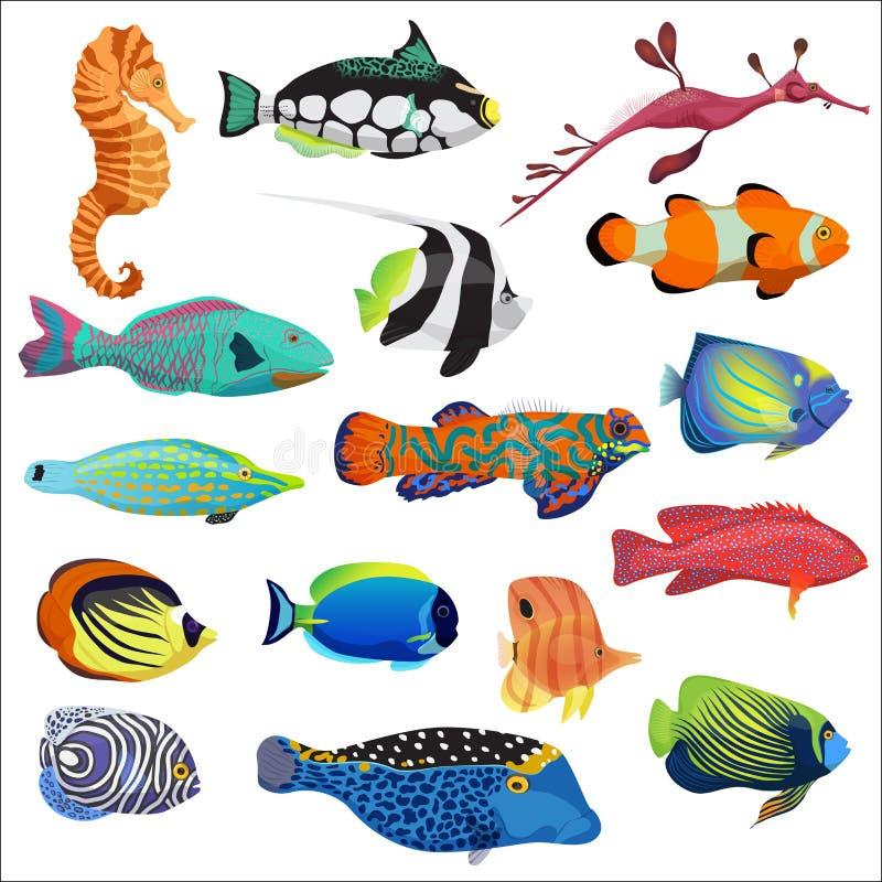 Den exotiska färgrika tropiska fisken fiskar samlingsuppsättningen stock illustrationer