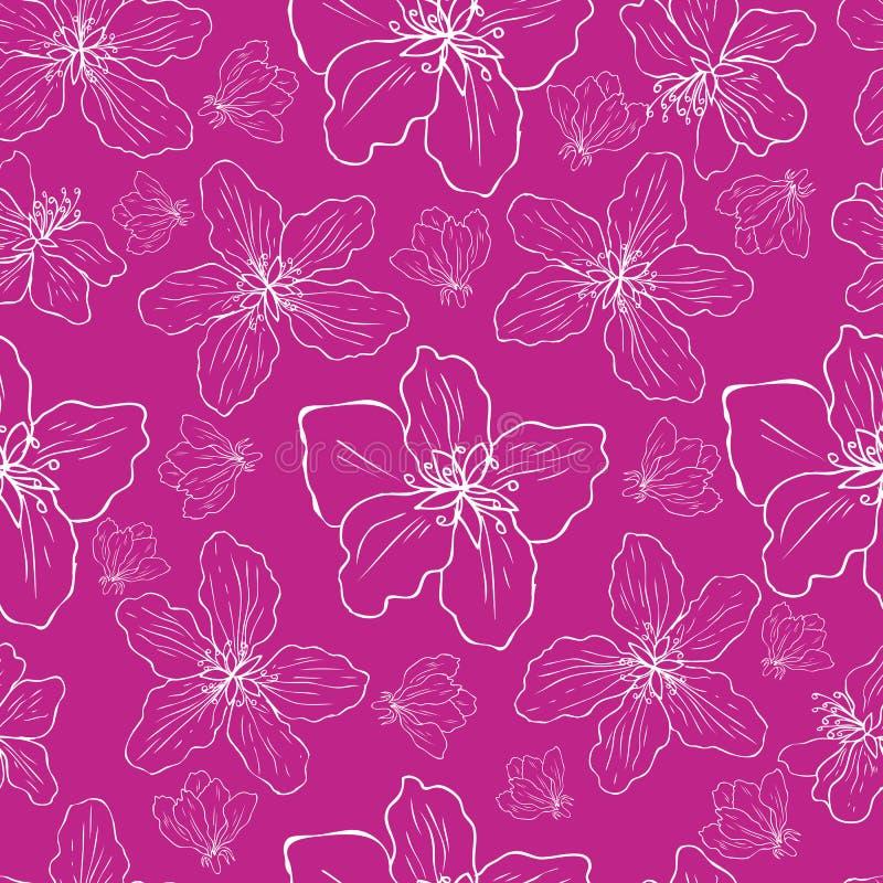 Den färgrika blomningen för det Apple blommaträdet skissar handen som dras som isoleras på rosa bakgrund, den blom- modellen för  stock illustrationer