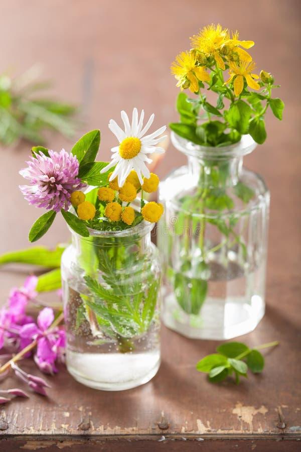 Den färgrika läkarundersökningen blommar och örter i glass krus arkivbilder