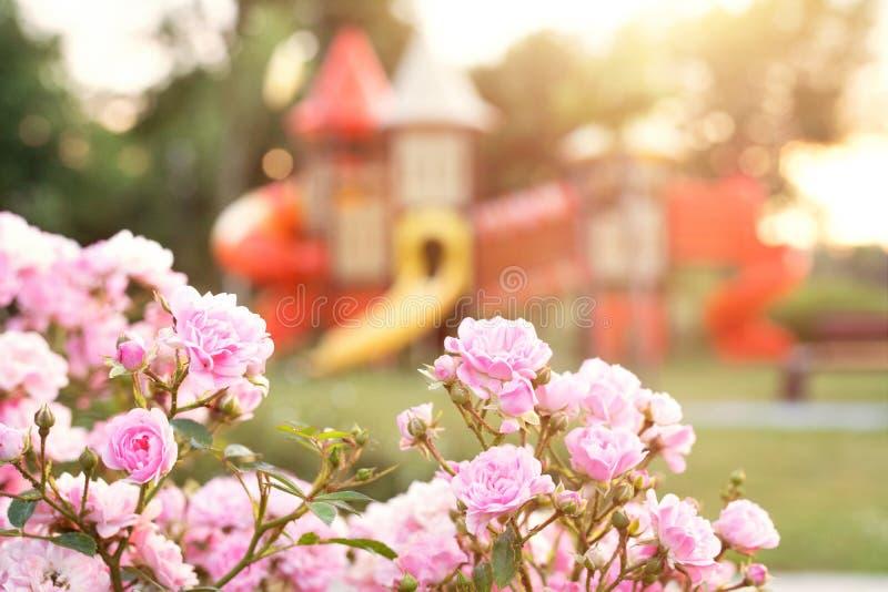 Den färgrika lekplatsen i parkerar suddigt royaltyfri foto