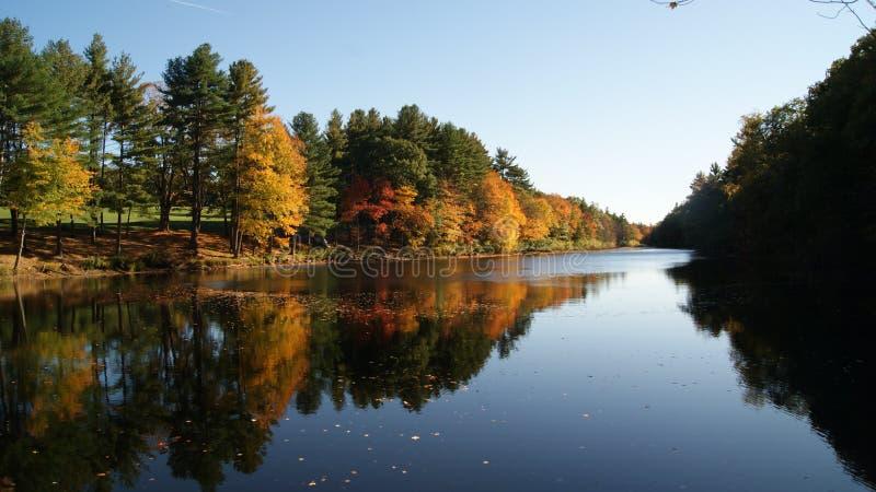 Den färgrika skogen av New England i höst med rött, gör grön, guling- och apelsinblad som reflekterar i en sjöflod arkivfoto