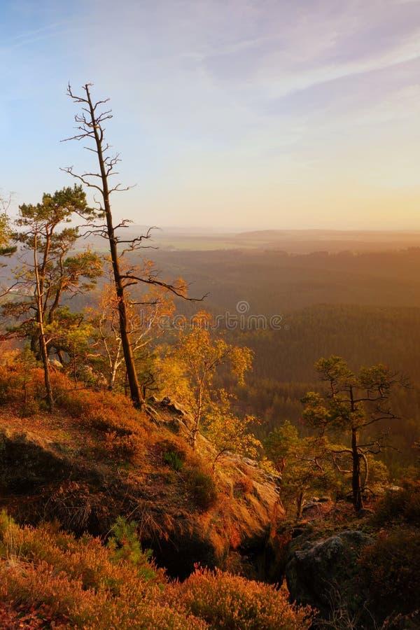 Den färgrika solnedgången i en stenig härlig höst parkerar Böjda träd på maxima ovanför den djupa dalen Orange solstrålar för aft royaltyfria bilder