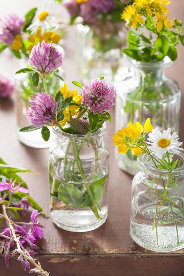 Den färgrika sommarläkarundersökningen blommar och örter i krus arkivfoton