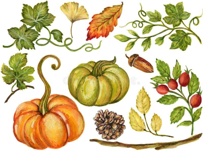 Den färgrika vattenfärggouachen Autumn Fall förgrena sig med sidor och stock illustrationer