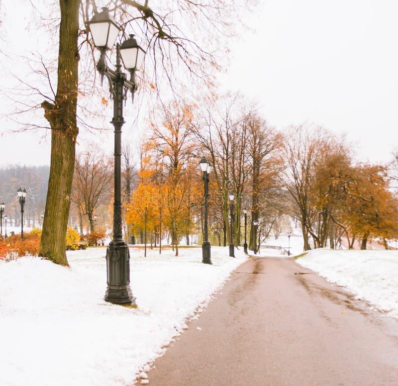 Den första insnöade hösten parkerar royaltyfria bilder
