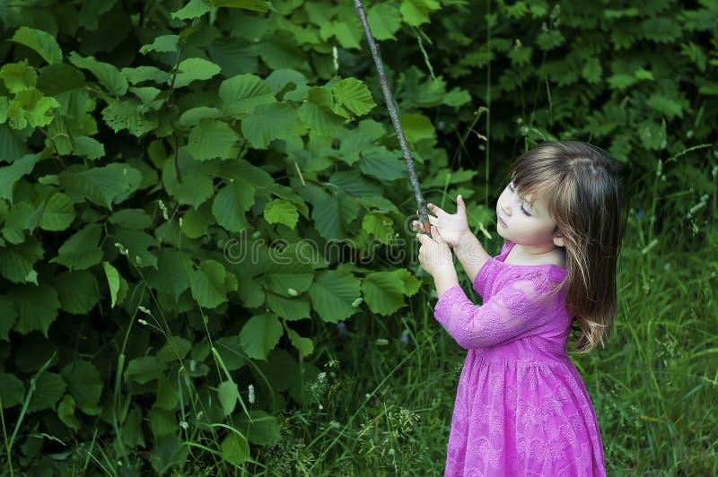 Den förtjusande lilla flickan i rosa färger klär i skogen Forest Nymph solig dag arkivbild