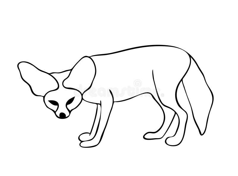 Den Fennec räven i svartvita färger, översiktshand målade teckningen royaltyfri illustrationer