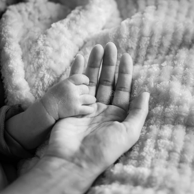 Den filtrerade bilden av mycket litet behandla som ett barn handen i hennes moder gömma i handflatan för förälskelse- och skyddsb royaltyfri bild
