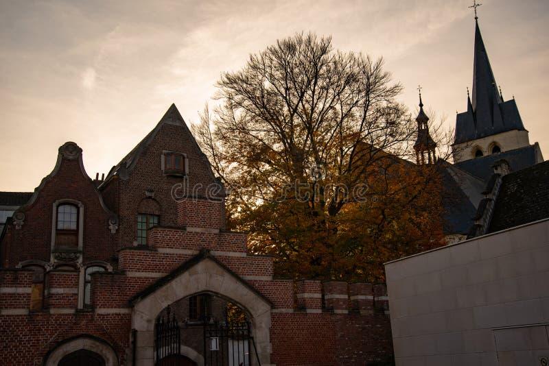 Den flamländska belgiska staden Mechelen Flamländsk arkitektur arkivbilder