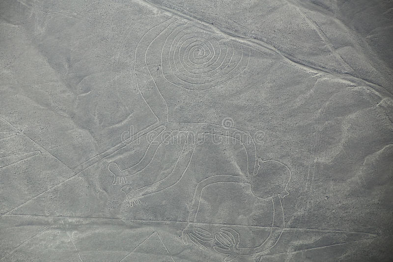 Den flyg- sikten av Nazca linjer - härma geoglyph, Peru royaltyfri bild