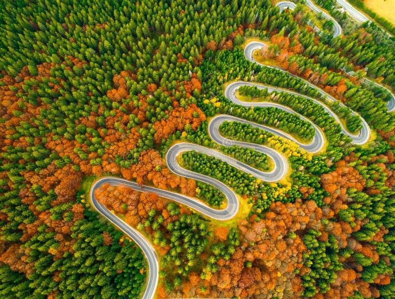 Den flyg- sikten av den slingriga vägen till och med höst färgade skogen fotografering för bildbyråer
