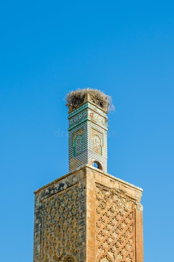 Den forntida Chellah nekropolen fördärvar med moskén och mausoleet i huvudstad Rabat, Marocko, Nordafrika för Marocko ` s arkivfoton