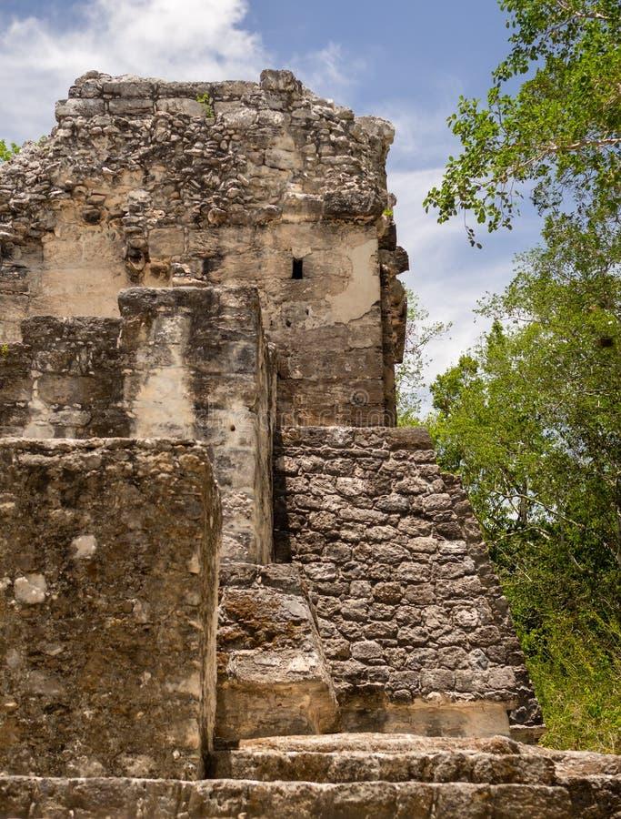 Den forntida Mayan stenen fördärvar på Calakmul, Mexico arkivfoto