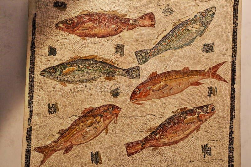Den forntida roman mosaiken i medborgaren Roman Museum, romare, Italien fotografering för bildbyråer