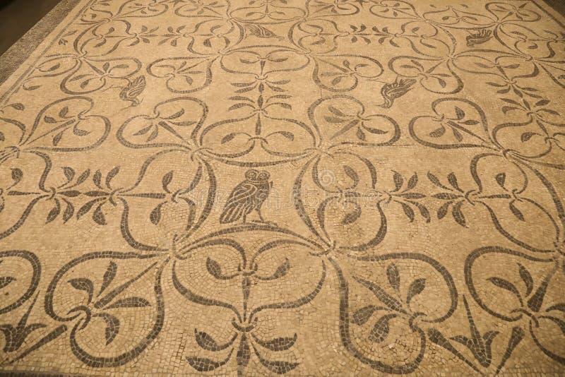 Den forntida roman mosaiken i medborgaren Roman Museum, romare, Italien royaltyfria foton