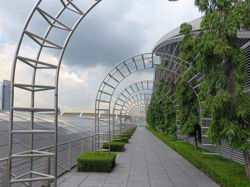 Den fot- gångbanan i trädgårdar vid fjärdnaturen parkerar i Singapore arkivfoto