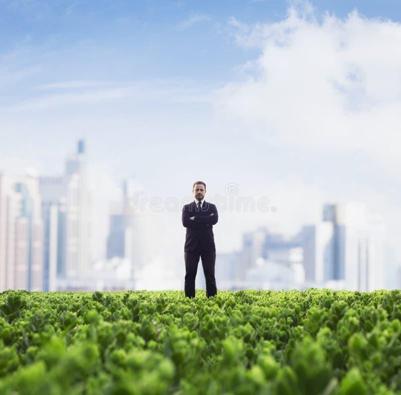 Den främre sikten av affärsmannen med armar korsade anseende i ett grönt fält med stadshorisont i bakgrunden royaltyfria foton