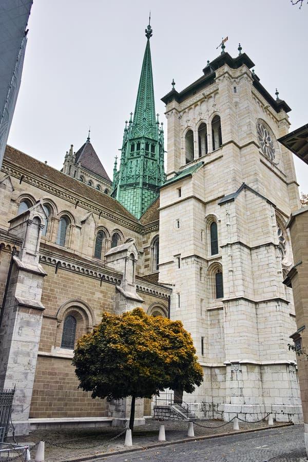 Den främre sikten av St Pierre Cathedral i Genève, Schweiz fotografering för bildbyråer