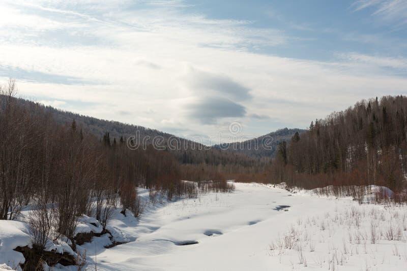 Den fryste floden i skogen som täckas med snö, i bakgrundsträden som täckas med snö, kan du se himlen, dagen royaltyfri foto