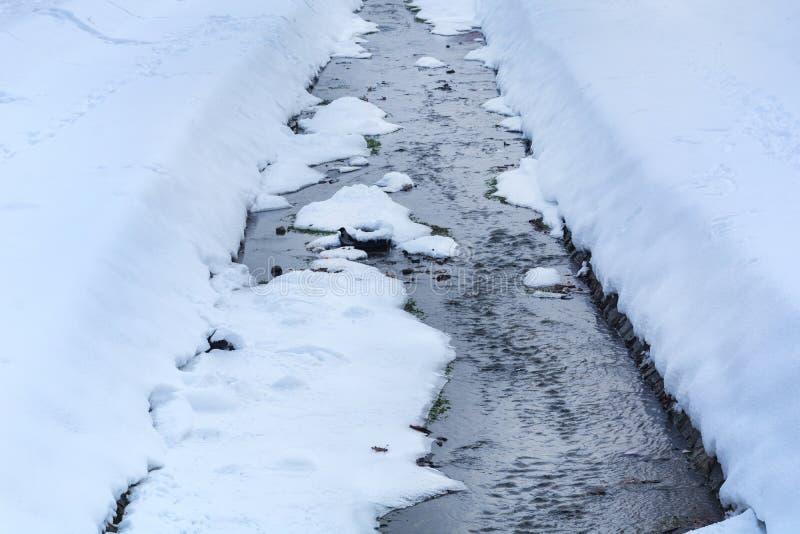 Den fryste lilla floden på kall dag för vinter i stad parkerar royaltyfri bild