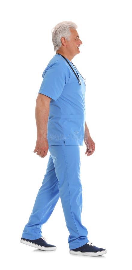 Den fulla längdståenden av den manliga doktorn skurar in med stetoskopet som isoleras på vit arkivfoto