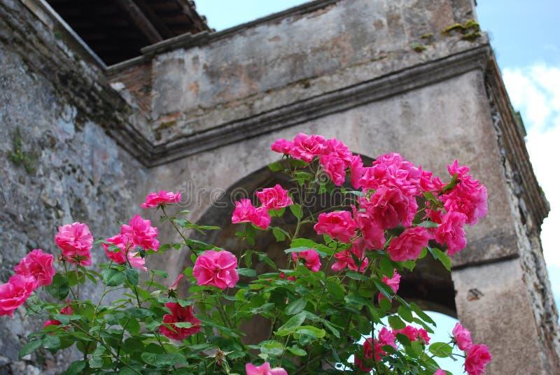 In den Gärten von Landhaus D 'Este, Tivoli, Italien lizenzfreie stockbilder