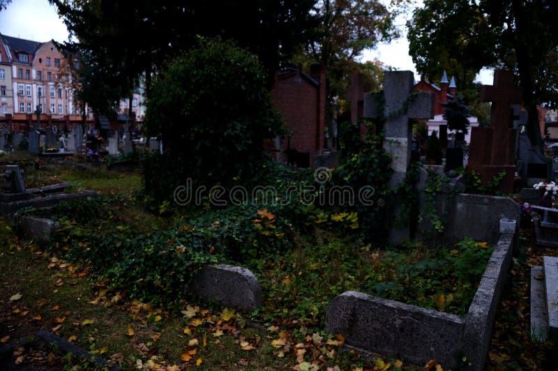 Den gamla kyrkogården royaltyfria foton