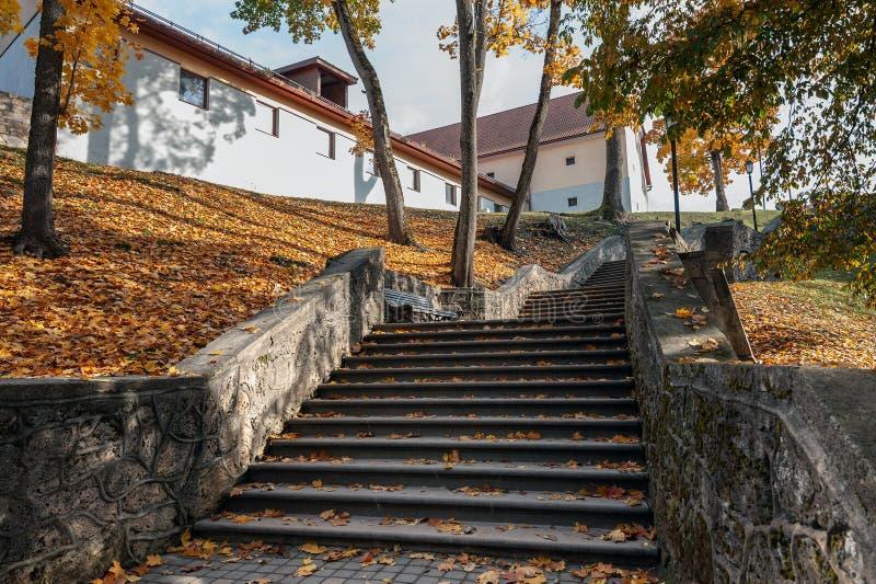 Den gamla medeltida trappan i höst parkerar Cesis stad latvia royaltyfria foton