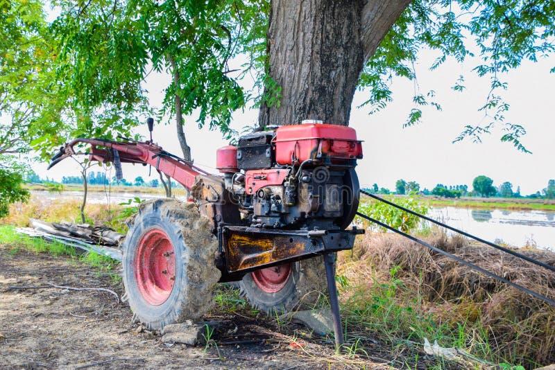 Den gamla röda rorkulttraktoren eller gå traktor som parkeras under trädet i fälten på bygd, Thailand royaltyfri fotografi