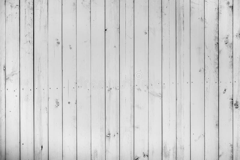 Den gamla trävita färgväggen, lott av sprickor, lemmar och spikar, weaen fotografering för bildbyråer