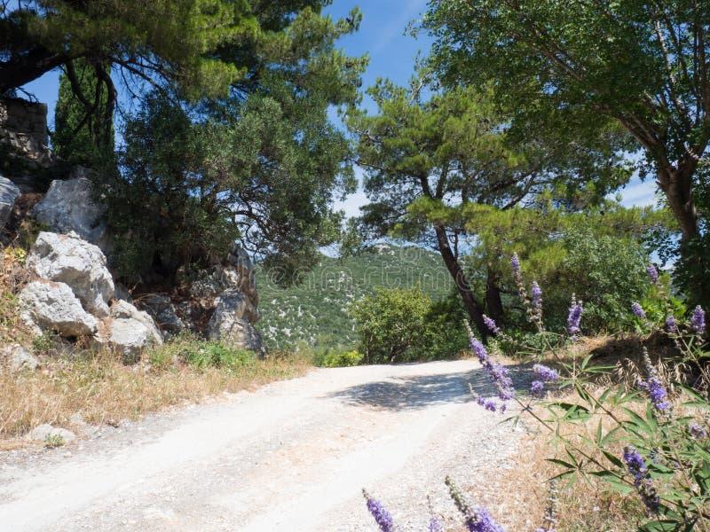 Den gamla vägen runt om de härliga Bacina sjöarna i Dalmatia, Kroatien - semestra destinationen royaltyfria foton