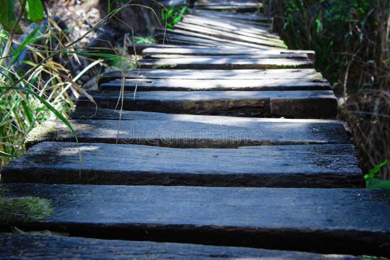 den gammala bron wodden fotografering för bildbyråer