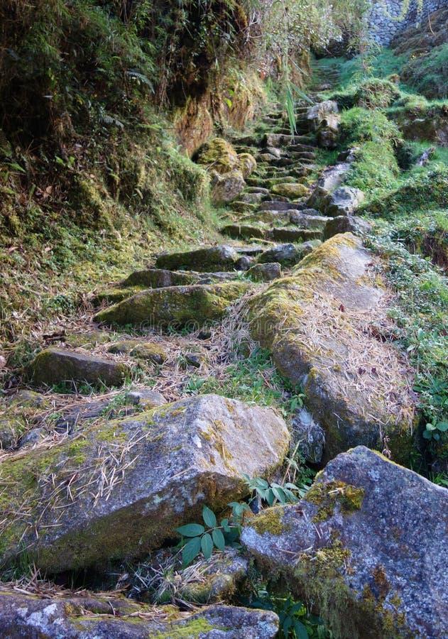 Den gammala stenen kliver fotografering för bildbyråer