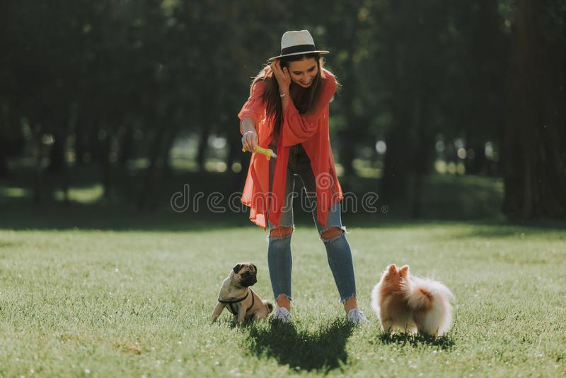 Den gladlynta damen i hatt går med två hundkapplöpning royaltyfria foton
