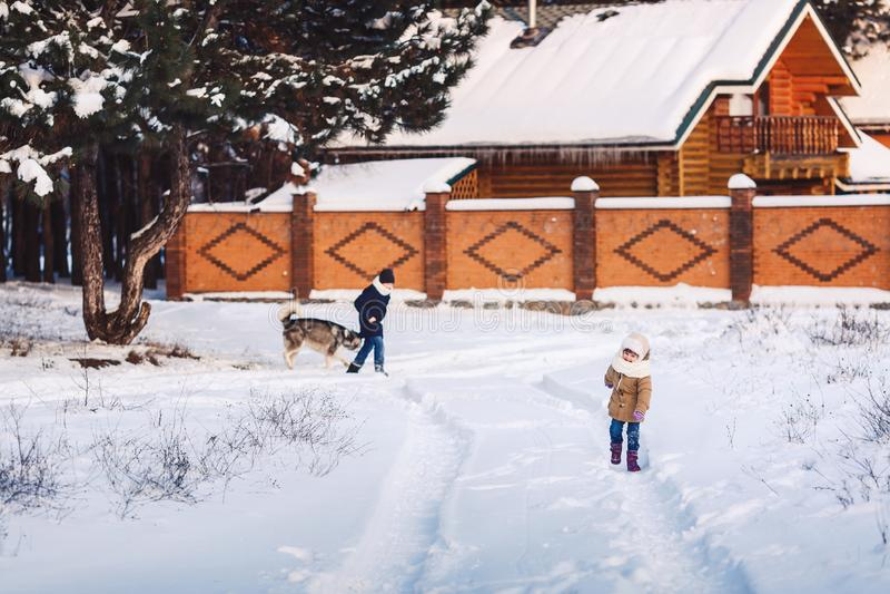 Den gladlynta lilla flickan och pojken går med deras hund i parkerar i vinter arkivfoto