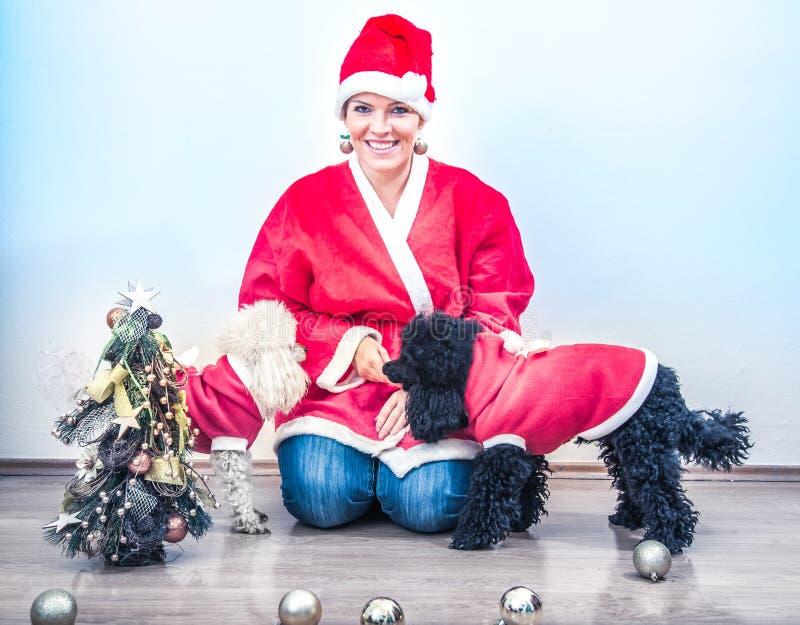 Den gladlynta unga kvinnan i jul utrustar medföljt av två söta pudlar royaltyfri fotografi