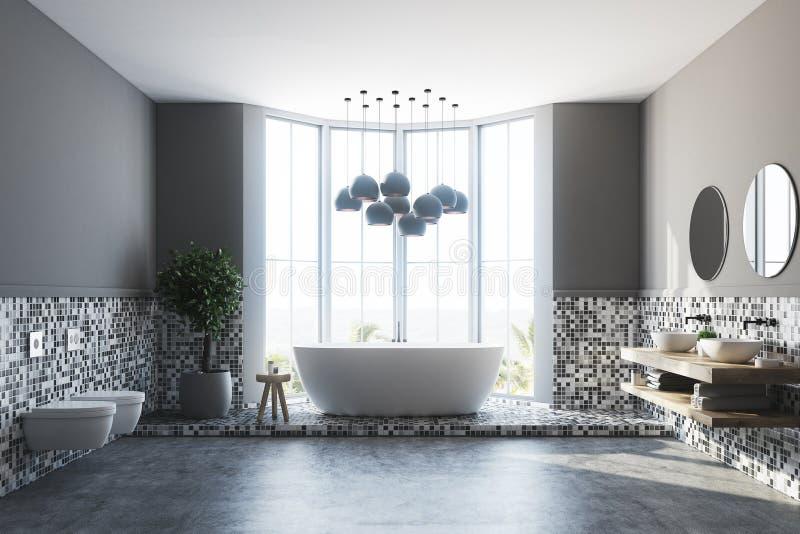 Den gråa badruminre, badar och sjunker vektor illustrationer