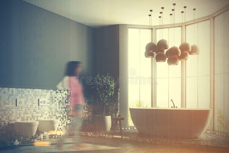 Den gråa badruminre, badar och tonade toaletter royaltyfri illustrationer