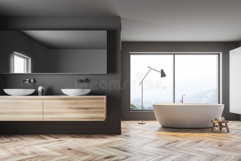 Den gråa panorama- badrumvasken och badar stock illustrationer