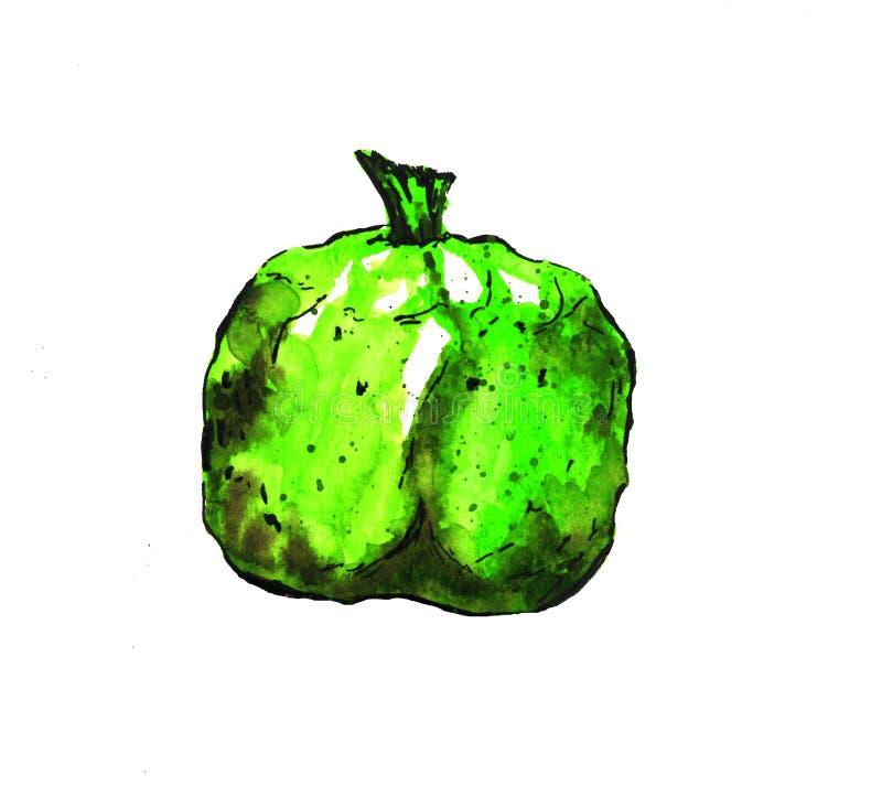 Den gröna abstrakta illustrationgranatäpplet som isoleras på vit bakgrund, skissar höst stock illustrationer