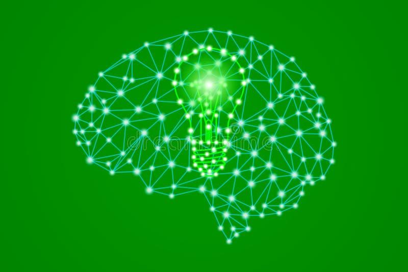 Den gröna lightbulben undertecknar i polygonal låg poly hjärna för mänskligt huvud för plexus royaltyfri illustrationer