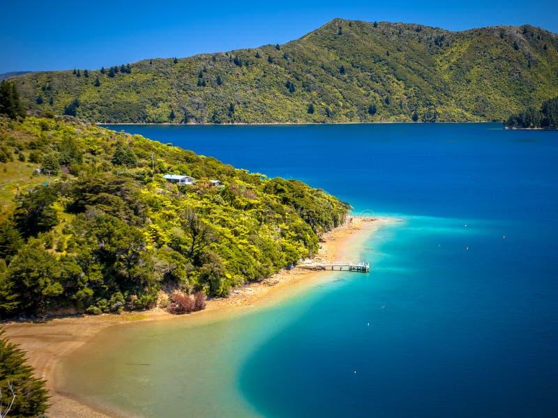 Den gröna skogen och turkosblått vatten i Marlborough låter royaltyfri bild