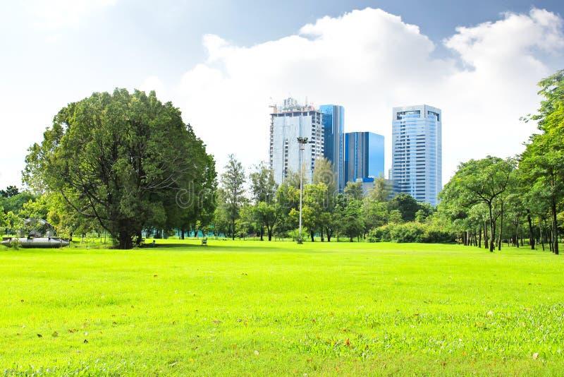 Den gröna staden parkerar fotografering för bildbyråer