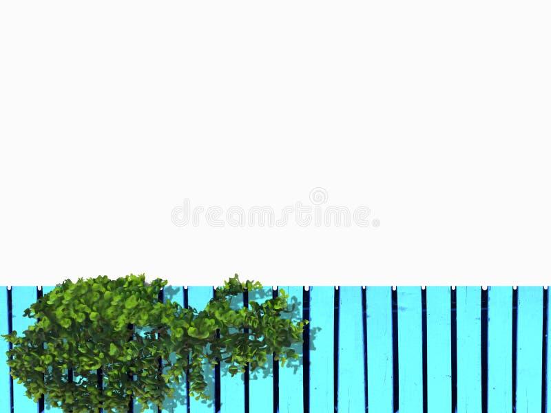 Den gröna växten är på blått trä arkivfoton