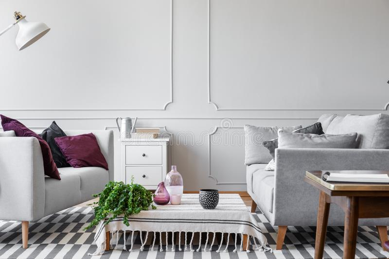 Den gröna växten, exponeringsglasvaser och doted kaffe rånar på kaffetabellen i scandinavian vardagsrum med den ljusa gråa väggen arkivfoto