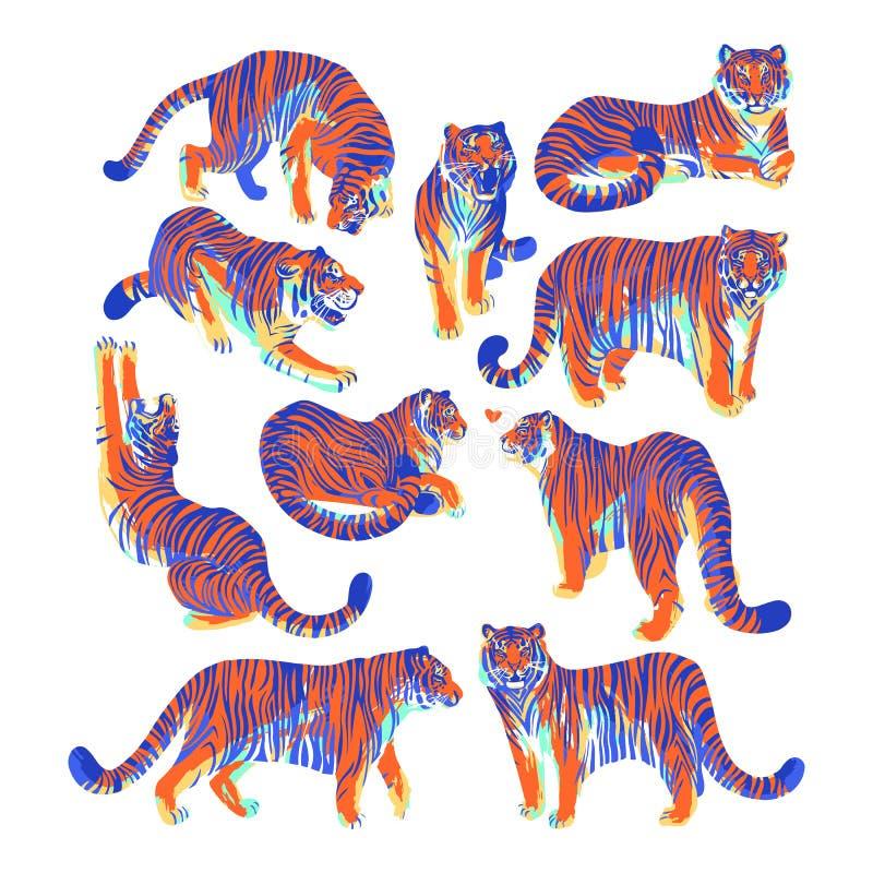 Den grafiska samlingen av tigrar i olikt poserar royaltyfri illustrationer